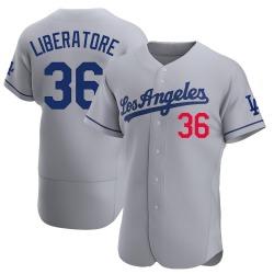 Adam Liberatore Los Angeles Dodgers Men's Authentic Away Official Jersey - Gray
